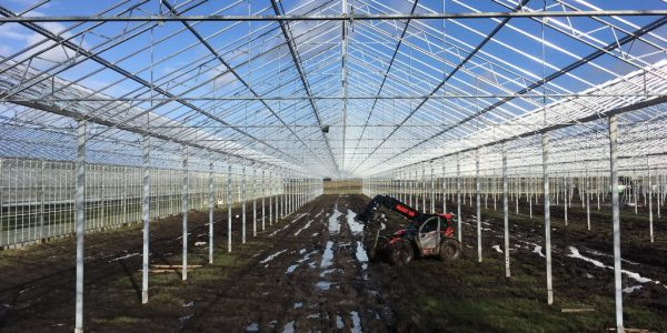 Wide-span greenhouses